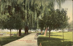 The Willows, Thrall Park