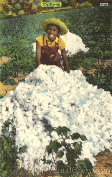 Cotton Picking - The Payoff Black Americana