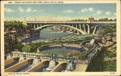 Trout Hatchery And Park Postcard