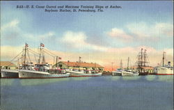 U. S. Coast Guard And Maritime Training Ships At Anchor, Bayboro Harbor