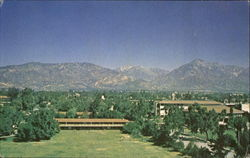 A View Of The Campus, Claremont McKenna College