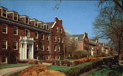 Commons Row, University Of New Hampshire Postcard