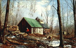 Maple Sugaring In Vermont