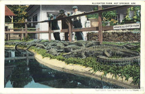 Alligator Farm Hot Springs Arkansas