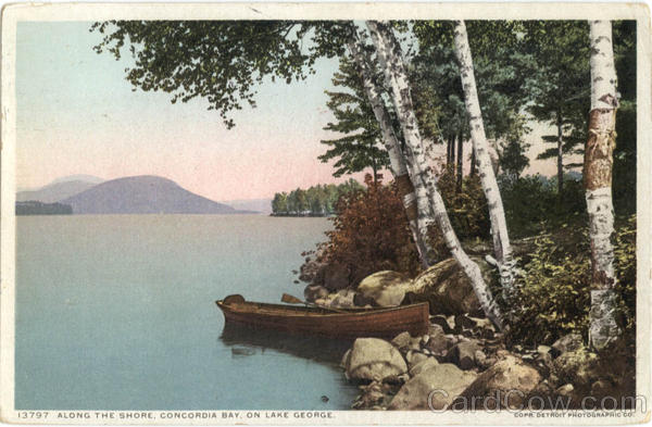 Along The Shore, Concordia Bay, On Lake George New York