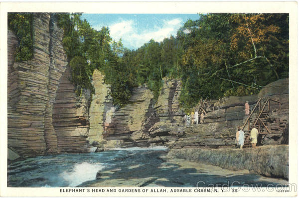 Elephant's Head And Gardens Of Allah Ausable Chasm New York