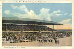 The Race Track, Hialeah