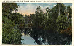 The Beautiful Anclote River