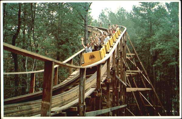 Kings Dominion Roller Coaster Amusement Parks