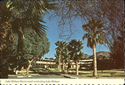 Lake Mohave Resort Motel Overlooking Lake Mohave Postcard
