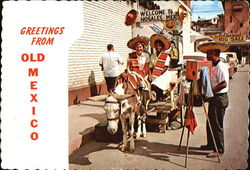 Greetings From Old Mexico Postcard
