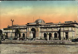 Cairo - The Museum Postcard
