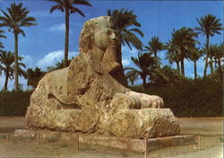 The Sphinx of Sakkara Postcard
