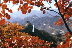 Autumn Scene Of The Great Wall Postcard