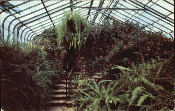 Interior Of Conservatory In Como Park St. Paul Minnesota