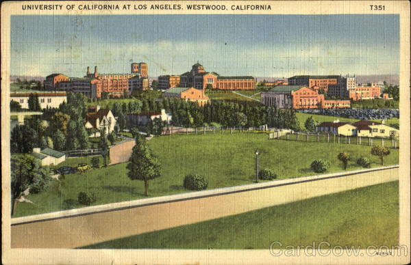 University Of California, West Wood Los Angeles
