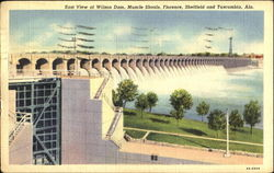 East View Of Wilson Dam Postcard