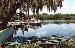 Beautiful Scenic Florida Waterways