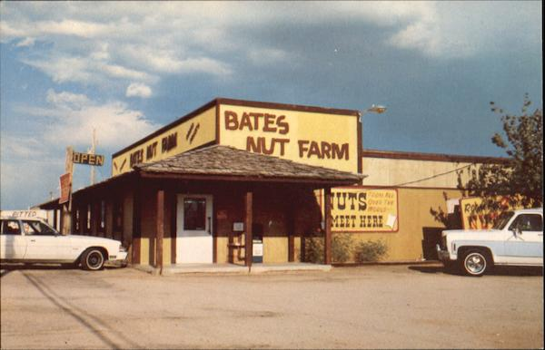 Bates Nut Farm, 9605 E. Apache Trail Mesa Arizona