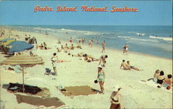 Padre Island National Seashore Postcard