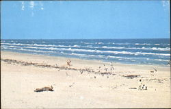 A View Of The Beautiful Public Beach Postcard