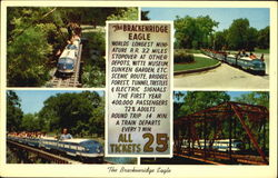 The Brackenridge Eagle