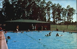 Free Swim At Niwana