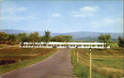 Iron Kettle Motel Postcard