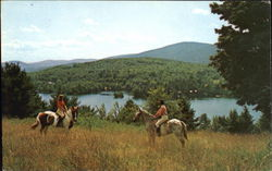 Horseback Riding Postcard