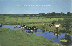 Greetings From Barron Postcard