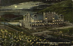 The Pavilion At Columbia Gardens By Night