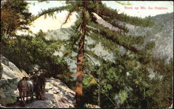 Trail Up Mt. La Cumbre Postcard