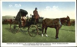 Seeing Mount Royal By Carriage Postcard