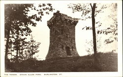 The Tower, Ethan Allen Park Postcard