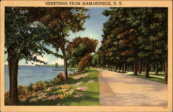 Greetings From Mamaroneck