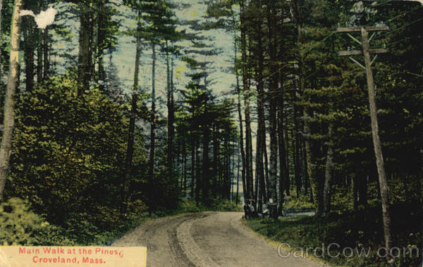 Main Walk at the Pines Groveland Massachusetts