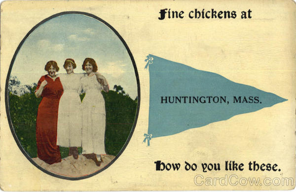 Fine Chickens Huntington Massachusetts Banners & Pennants