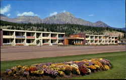 The Andrew Motor Lodge Jasper National Park Postcard