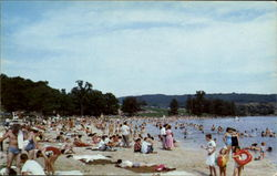 The Beach At Shawnee State Park, Shellsburg