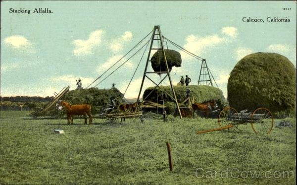 Stacking Alfalfa