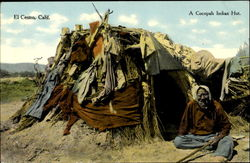 A Cocopah Indian Hut