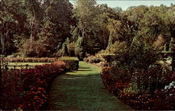 International Friendship Gardens Postcard