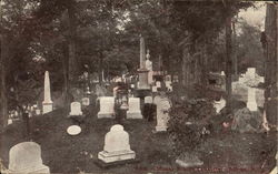 View in Mount Albion Cemetery Postcard