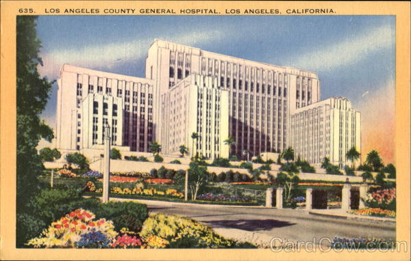Los Angeles County General Hospital California