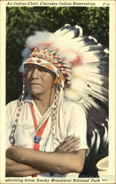 An Indian Chief Native Americana