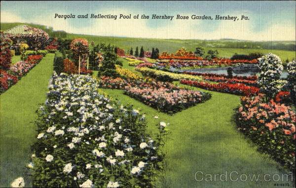 Pergola And Reflecting Pool Of The Hershey Rose Garden Pennsylvania