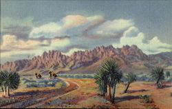 The Organ Mountains