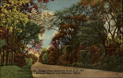 Scenic View Roosevelt Road Postcard