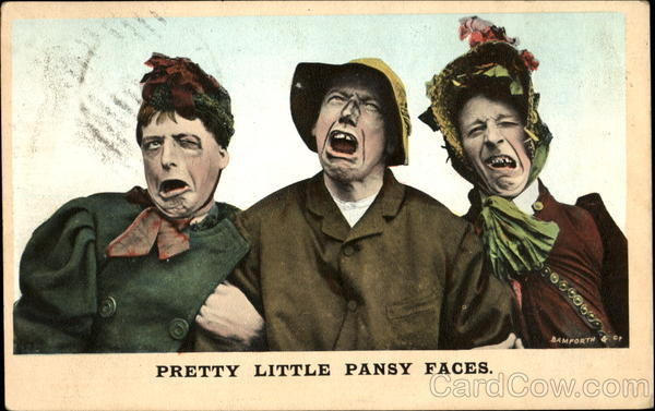 Pretty Little Pansy Faces Comic, Funny