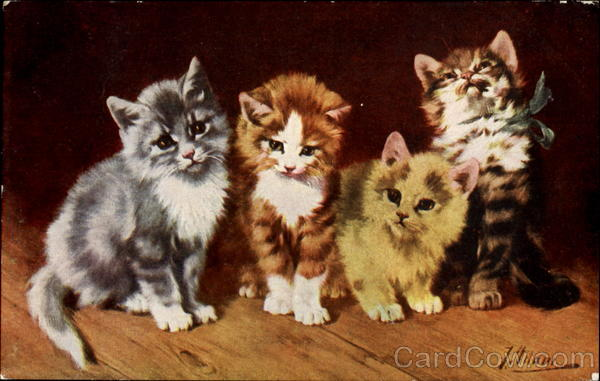 Kittens - signed Cats